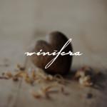 Dia dos Namorados: Presentes da Winífera