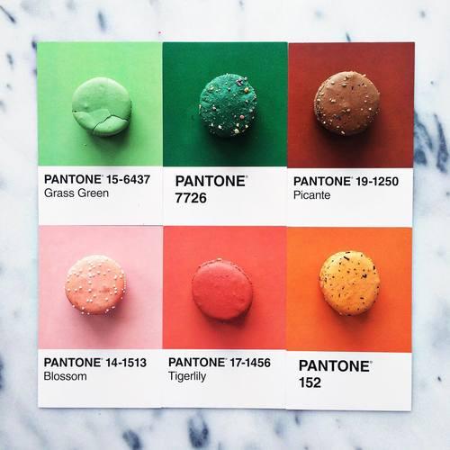 notícia, gourmetice, food art, #pantoneposts, pantone, lucia litman