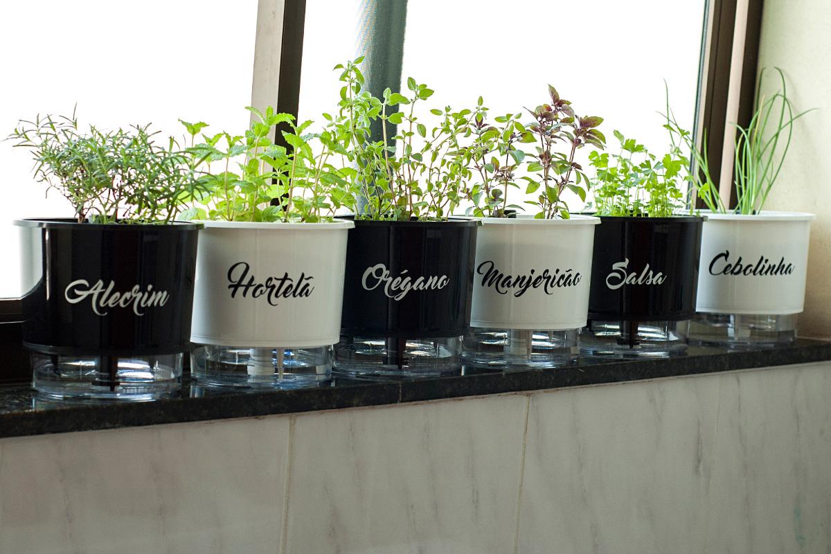 glossário, gourmetice, vasos, autoirrigáveis, plantei garden center, temperos, alecrim, hortelã, orégano, manjericão, salsa, cebolinha