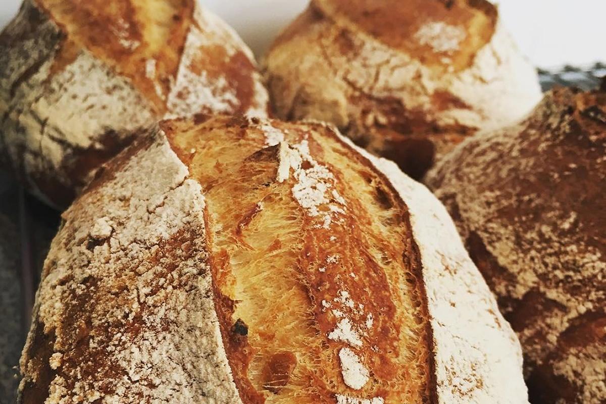 notícia, gourmetice, levain.club, pães artesanais, assinatura, fermentação natural, levain, porto alegre, poa