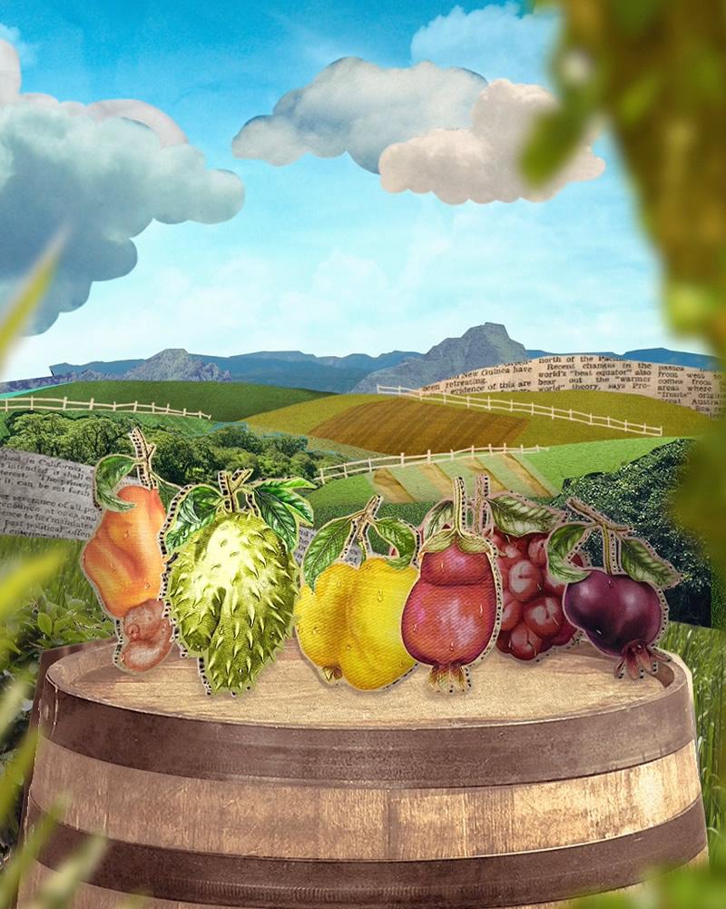 notícia, gourmetice, cervejaria, colorado, cerveja, frutas brasileiras, movimento, o sabor é cego, desiberne para o sabor, eugênia, rosália, nassau, murica